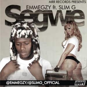 segwe(1)