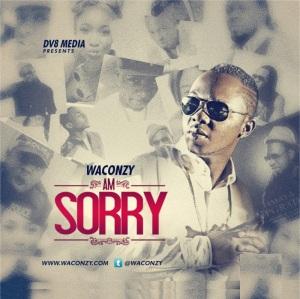Waconzy-Am_Sorry_artwork